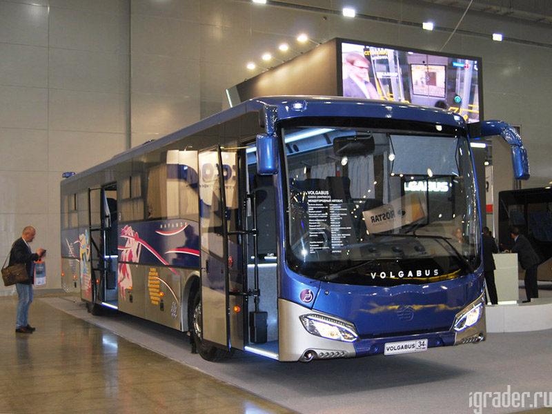 VolgaBus Марафон